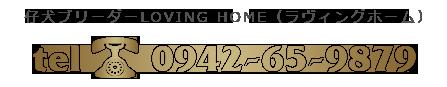 仔犬ブリーダーLOVING HOME 0942-65-9879